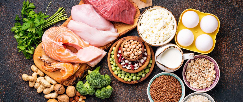 Nährstoffe in Welpenfutter